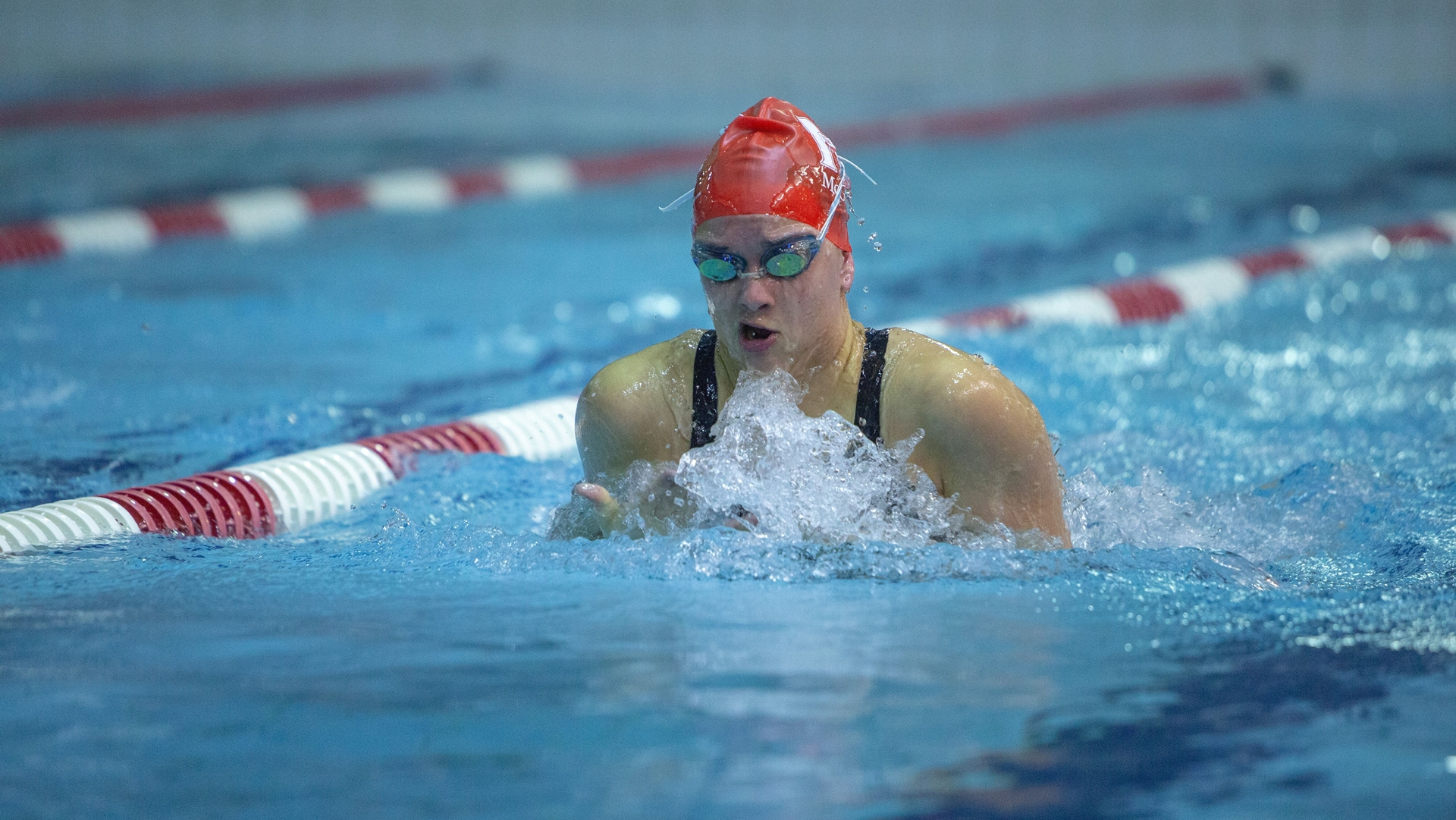 045d44cc5bded McGill swimmers win seven gold medals, finish second at Ottawa meet ...